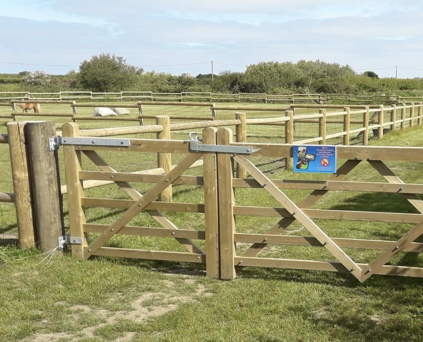 enclos à chevaux camping domaine de laneros